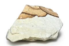 ypf_56506